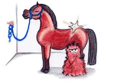 Pferdepflege: Fellwechsel von Pferden und Ponys im Frühjahr.