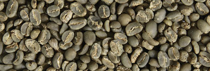 Rohkaffee Indien Robusta