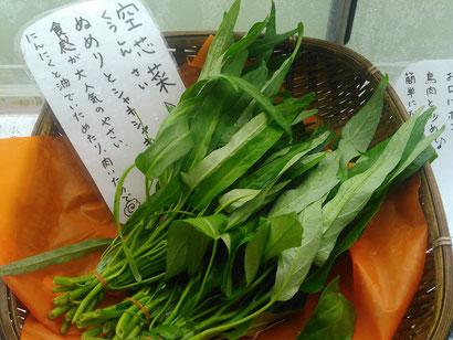 廣田農園の無農薬・無化学肥料の空心菜
