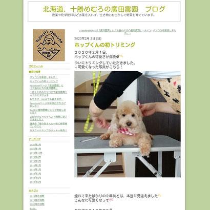 エキサイトブログ 十勝めむろの廣田農園 ブログ