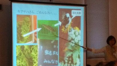廣田農園 講演歴 ヒロタユミ講演会