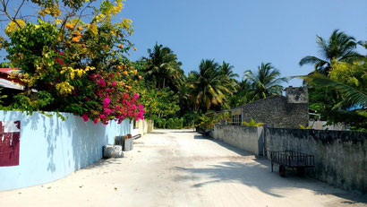 Photogenic empty streets dot Dharavandhoo island in the Maldives. Dante Harker