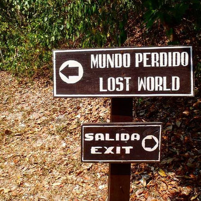 Which way would you go?