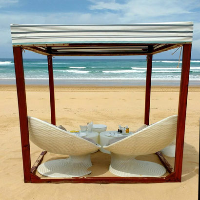 Food served on the beach - Dante Harker