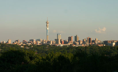 Johannesburg's skyline is surprisingly green when viewed from the hills. Dante Harker