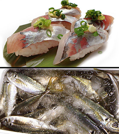 寿司 出前 千代田区 神田