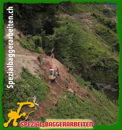 Krieg Adi Landwirt Baggerpilot Baggerfahrer Schreitbaggerfahrer Menzi Muckfahrer Chauffeur Schweiz Zürich Bern Uri Schwyz Obwalden Nidwalden Glarus Zug Freiburg Solothurn