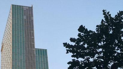 Француз забрался без страховки на крышу отеля в Барселоне