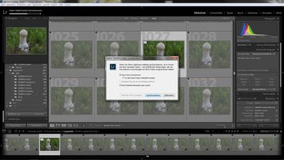 LR: Ordner synchronisieren: ein Foto (das neue gestackte Bild) wird importiert