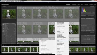 LR: Gewünschte Bilder des Stacks selektieren und im Stapel gruppieren