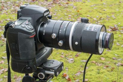 D700 mit Nikon Medical-Nikkor 200mm f5.6 1:15 – 3:1 (uralt)