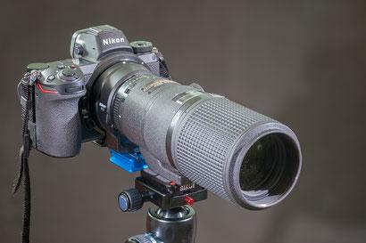 Z6 mit Nikon 200mm f4 D Micro Nikkor 1:1 (alt)