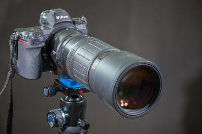 Z6 mit Sigma 300mm f4 APO Macro 1:3 (alt)