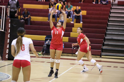 Las Jerezanas de la UPR de Río Piedras van a semifinales del voleibol LAI. (J. Santana) / FOTO POR LAI