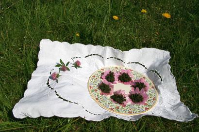 Brennnesselsamen auf einem Teller in Malvenblüten angerichtet