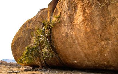 Granit, Verwitterung, Erongo Berge, Namibia, Afrika