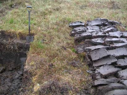 Mächtige Torfschicht auf der Insel Lewis (Schottland) / © Wojsyl - Wikimedia Commons