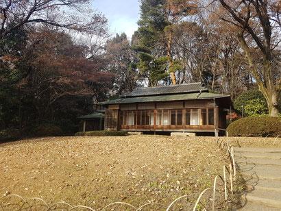 Japan, Blog, Bujinkan Budo Taijutsu, Lauf an der Pegnitz, Bujinkan, Kampfkunst, Lauf, Martial Arts, TSV Lauf,