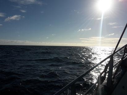 Bestattung im Meer in der Nordsee, Ostsee, Mittelmeer und weltweit