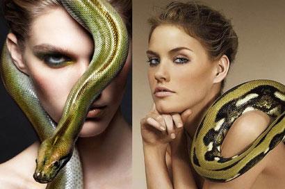 podrugi-zmei