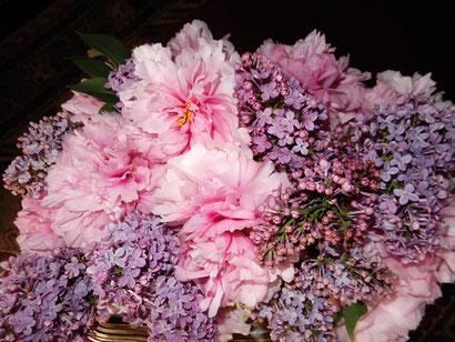 Pivoines et lilas s'accordent en parfaite harmonie de couleurs.