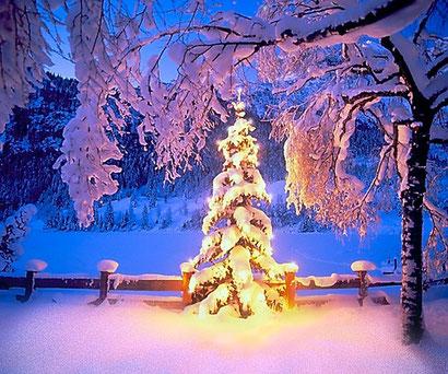 Besinnliche Weihnachtsbilder.Frohes Und Besinnliches Fest Ff Gosau
