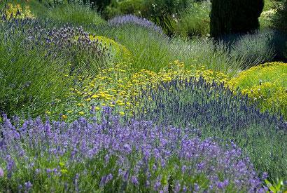 creation jardin uzes