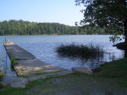 Erste Reise mit der Diganose: ein Sommer in Schweden.