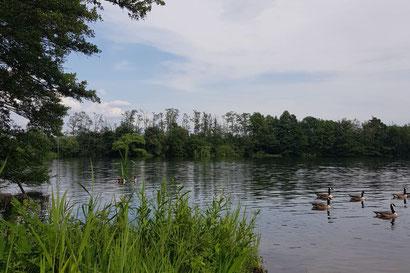 Großkrotzenburger See, Hessen