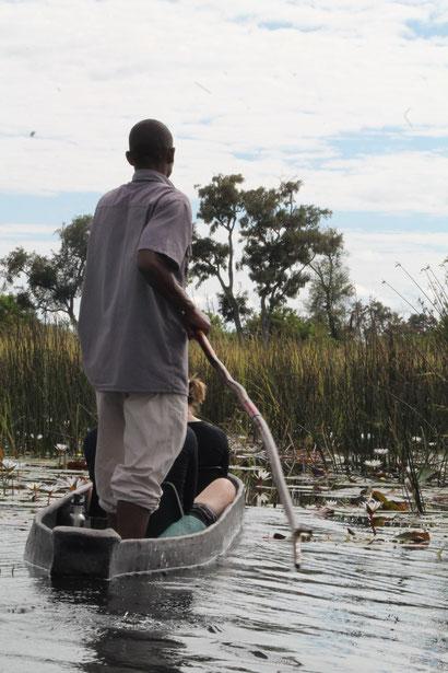 Okavango River bei Maun, Botswana