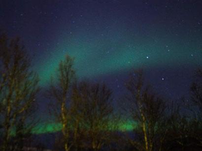 Nordlichter im Stadtwald von Tromsø