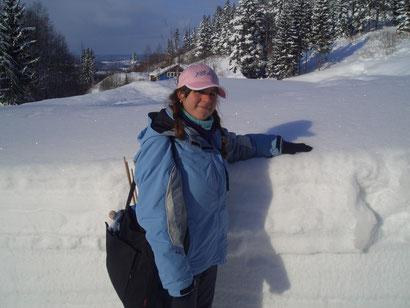 Schnee auf dem Weg nach Vikersund