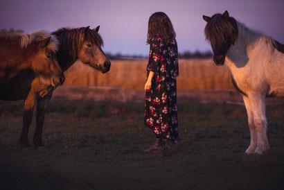 Meditation mit Pferden, ausgeglichen leben, Enspannt, Stress reduzieren, Erholt, Produktivität