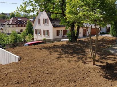 Hier siehst Du die Ausgangssituation in meinem Garten