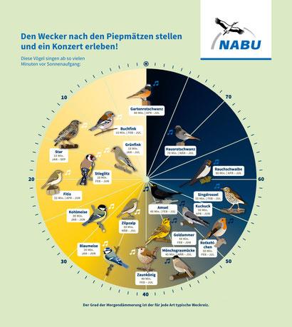 Vogeluhr; NABU/Jenni Ottilie Keppler & Carolin Oelsner;