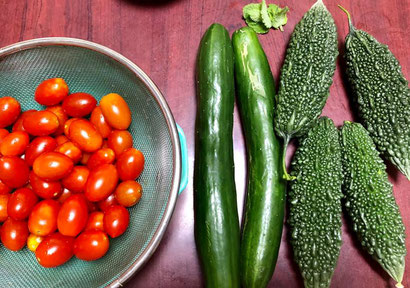 わが家の野菜たち