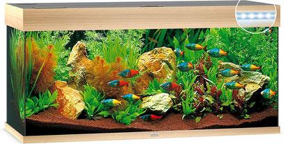 JUWEL Aquarium Rio 180 LED mit Unterschrank
