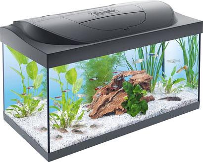 Tetra Starter Line LED Aquarium Komplettset