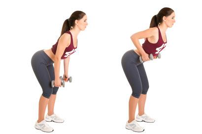 back exercises dumbbell row
