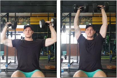 shoulder workout seated shoulder dumbbell press