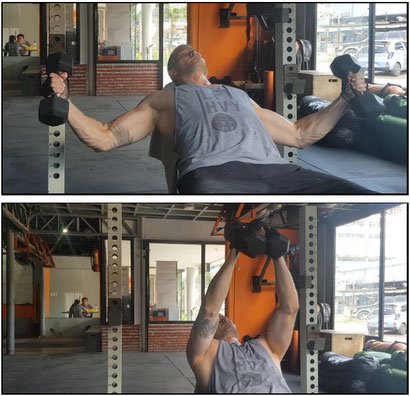 chest exercises incline dumbbell fly