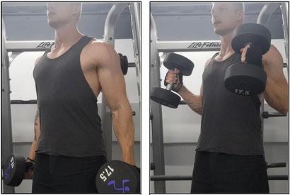 standing hammer curl