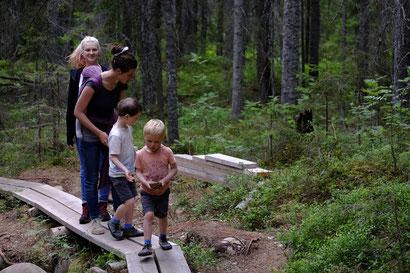 Auf dem Weg im Skuleskogen