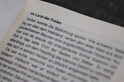 """Mark Lanvalls """"Lichtsturm I - Die weiße Festung"""""""