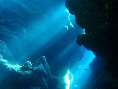 タクダイブの八重山の海の見所ページです。