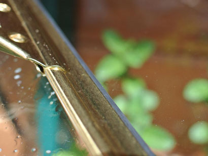 Sehr hilfreich beim Fensterputzen: Abzieher