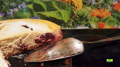 Rezeptvorschau auf ein Backrezept aus Dinkel-Dreams 3 von K.D. Michaelis für selbstgebackenen cremigen Zwetschgen-Käsekuchen