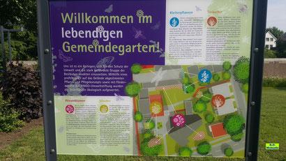Infotafel Wildblumen-Saum an der Evangelisch-Lutherischen Auferstehungskirche in Hannover-Döhren. Bild K.D. Michaelis