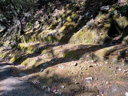 角礫凝灰岩の露頭