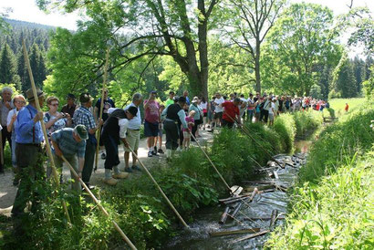 Schauschwemmen am Schwarzenbergischen Schwemmkanal | Ferienregion Böhmerwald